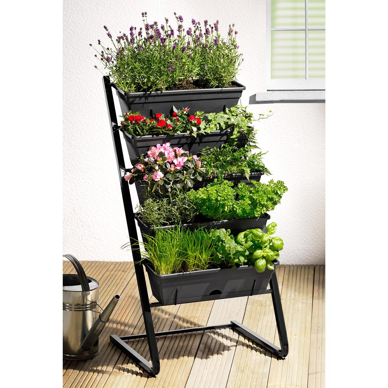 Plante Robuste Pour Terrasse escalier pour plantes