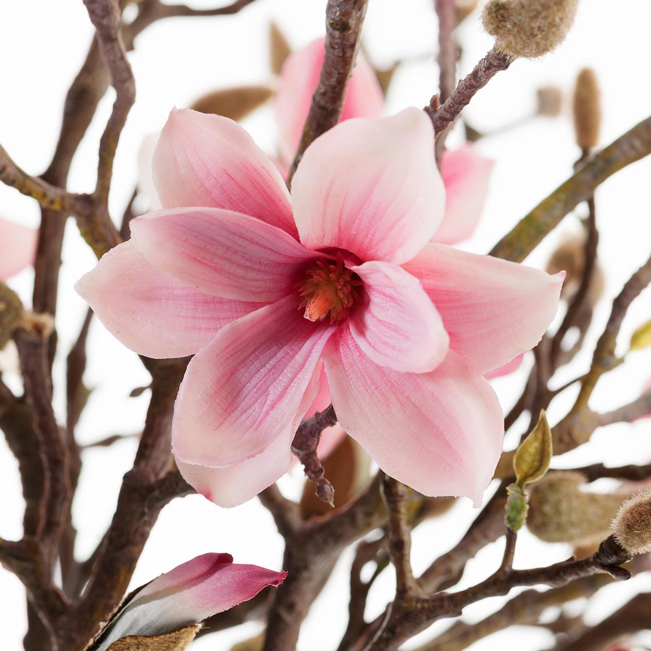 Bouquet De Magnolias Garantie Produit De 3 Ans