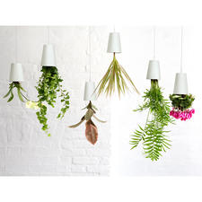 Jardinière Sky Planter - Vos plantes aromatiques, plantes vertes et plantes fleuries pendent du plafond, la tête en bas.