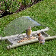 Mangeoire de sol - Nourrir, protéger et observer.
