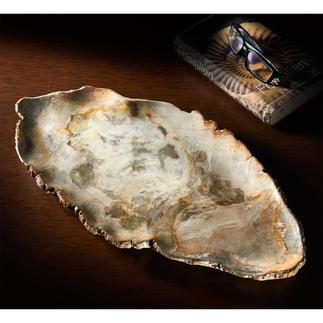 Coupelle en bois fossilisé Pièce unique précieuse : la coupe en bois pétrifié datant de 20 millions d'années.