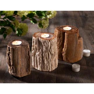 Photophore en bois pétrifié Chaque pièce est unique, de par sa forme et son veinage.