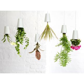 Jardinière Sky Planter Vos plantes aromatiques, plantes vertes et plantes fleuries pendent du plafond, la tête en bas.