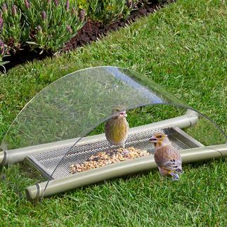 Mangeoire de sol Nourrir, protéger et observer.