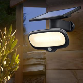 Lampe solaire de sécurité 500 lumen Plus clair qu'une ampoule de 60 watts et sans aucun frais d'électricité.