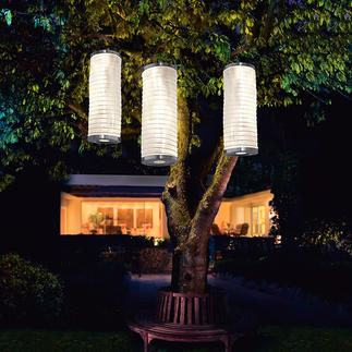 Colonnes lumineuses solaires, lot de 3 pièces Des lampions diffusent une lumière enchanteresse dans votre jardin.