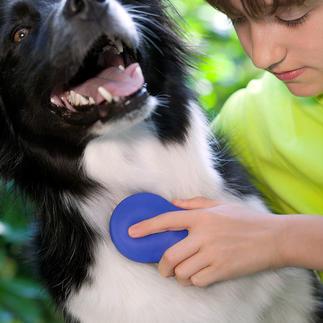 Brosse douce pour animaux Zilopet Une brosse qui prend soin du pelage de votre animal en douceur.