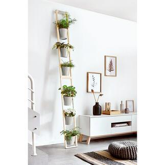 Échelle à plantes Confortable et peu encombrant : votre luxuriant jardin d'Eden sur un espace réduit.