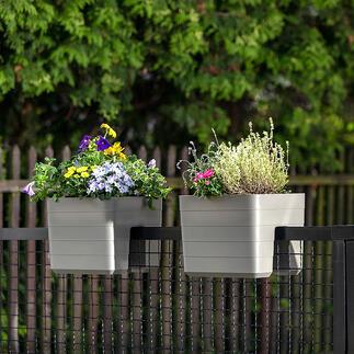 Jardinière de balustrade avec réservoir d'eau Vous serez bien équipés pour la chaleur estivale avec ces jardinières pour balustrade avec réservoir d'eau de 3,2 l.