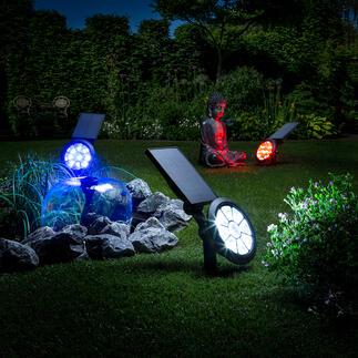 Spot de jardin solaire avec changement de couleur Donnez un effet fascinant à votre jardin avec un spectre de lumière fantastique. En 7 couleurs ou en alternance.