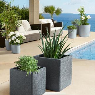 Pots à plantes ultralégers, lot de 4pièces La nouvelle génération de pots à plantes : extrêmement légers, ultrastables, isolants, recyclables.