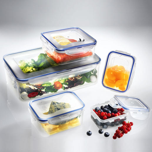 """Lot de 5 boîtes ou Boroseal """"Lock & Lock"""" 100 % étanche à l'air, à l'eau et aux arômes. Idéal pour transporter des aliments en toute sécurité."""