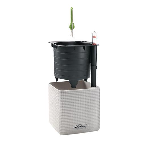 Pot à aromates auto-irrigant