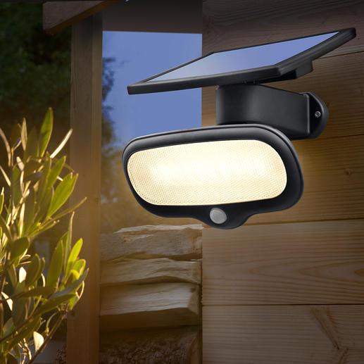 Lampe solaire de sécurité 500 lumen Plus clair qu'une ampoule de 40 watts et sans aucun frais d'électricité.