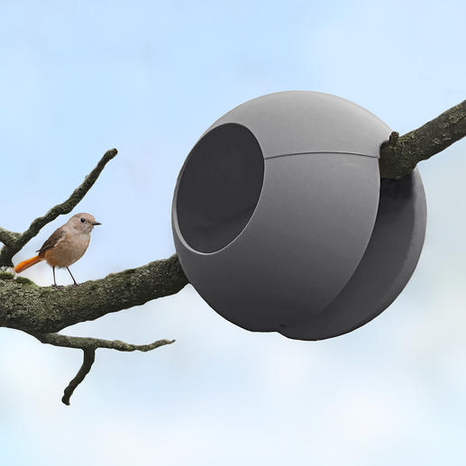A fixer non seulement sur la rambarde du balcon ou de la terrasse, mais également à une branche d'arbre jusqu'à 6 cm de diamètre.