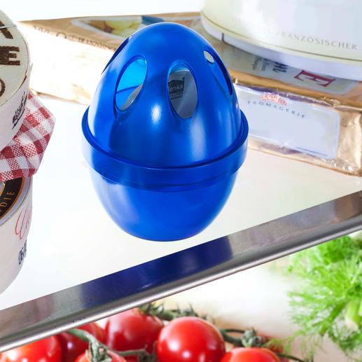 Destructeur d'odeurs pour réfrigérateur Fraîcheur naturelle dans votre réfrigérateur.