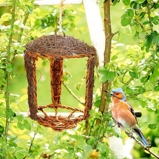 Nichoir ouvert, lot de 2 pièces Prêt à être utilisé en peu de temps et la base parfaite d'une future petite maison pour oiseaux.
