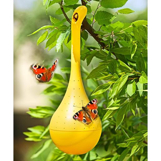 Oasis à papillons Lieu de convergence. Spécialement conçu pour ces insectes multicolores.