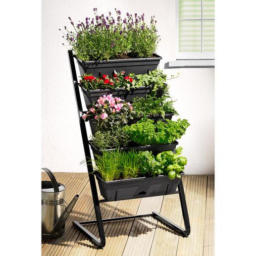Escalier pour plantes Vert luxuriant, splendeur florale et récolte abondante : un gain de place sur cinq étages.