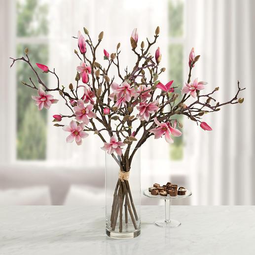 Bouquet de magnolias Une beauté qui ne fane jamais. Une superbe gerbe de sept branches – aussi élégante que naturelle.