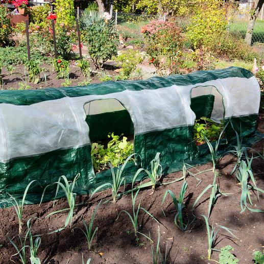 Polytunnel SuperDome Des conditions optimales pour la pousse de vos plantes. Installé en 5 minutes.