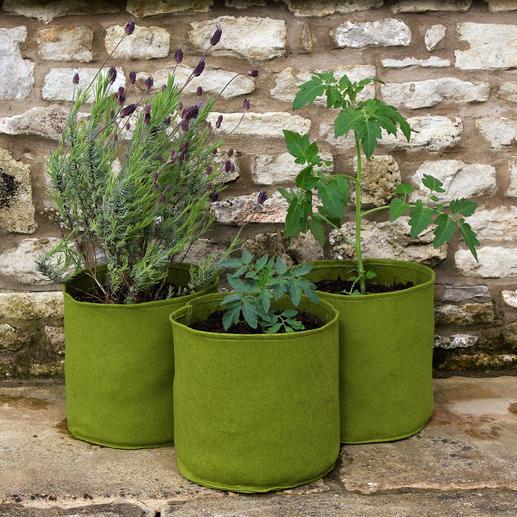 Sac de plantation Vigoroot™ Les sacs de plantation des professionnels : en tissu high-tech perméable à l'air et non pas en plastique.