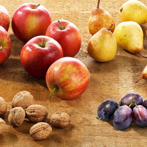 Collecteur petit format pour ramasser les noix, cerises, mirabelles, balles de golf. Collecteur grand format pour ramasser les pommes, poires, coings, pommes de pin, balles de tennis.