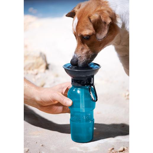 Gourde pour chiens AutoDogMug™ De l'eau fraîche et propre pour votre chien, toujours et en tout lieu.