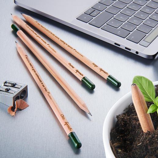 Crayons végétaux durables, lot de 5 pièces Super crayons végétaux aux graines d'herbes et de fleurs. Durables, respectueux de l'environnement et beaux.