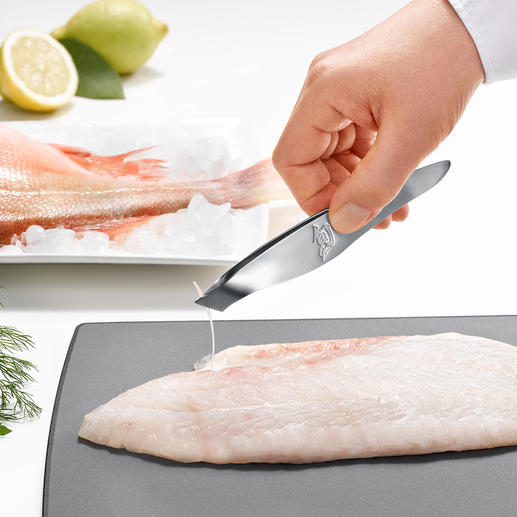 Pinces à arrêtes KAI Ultra précises, accrochantes et puissantes. Par le spécialiste japonais du couteau KAI.