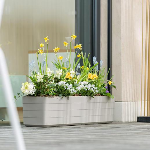 Jardinière design Plus moderne, plus élancée et plus élégante.
