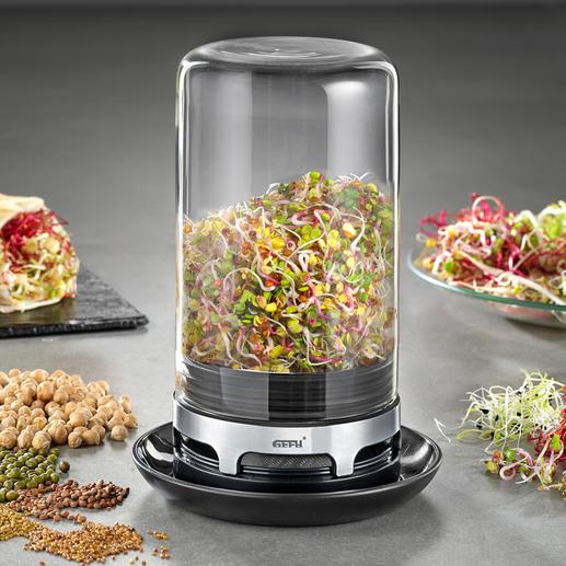 Germoir à graine Gefu Croquantes, saines et délicieuses : de tendres graines germées de votre propre potager.