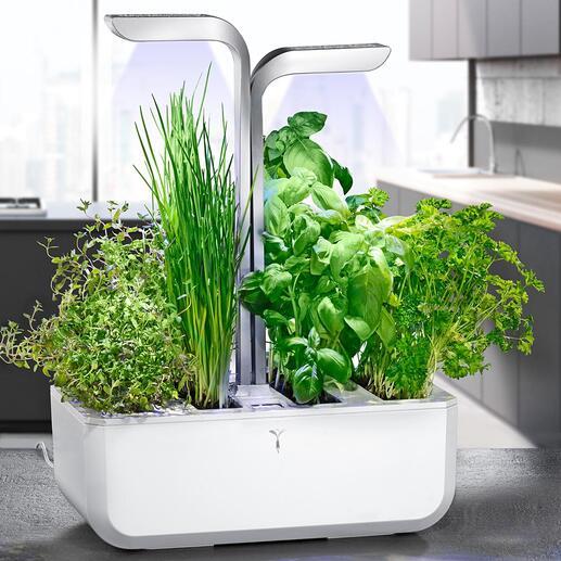 Jardin aromatique ingénieux Des herbes aromatiques fraîches au quotidien. De votre propre « potager ». Et plus facile que jamais.